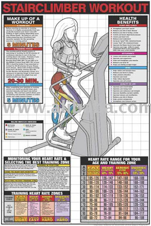 Poster, Stairclimber Workout (Laminated - Click for larger picture