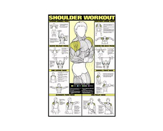 Poster, Shoulder Workout,Laminated - Click for larger picture