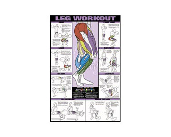 Poster,Leg Workout,Laminated - Click for larger picture