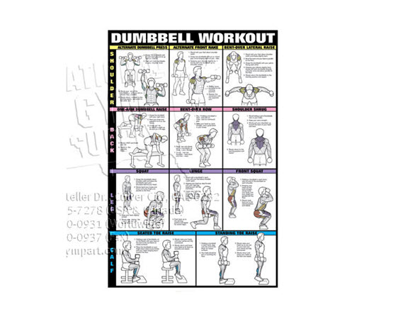 Poster,Dumbbell Workout,Laminated (2of2) - Click for larger picture