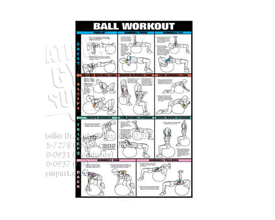 Poster, Swiss Ball Workout, Paper(1of2) - Click for larger picture