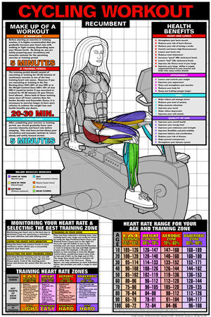 Poster, Recumbent Cycling Workout (Lam - Click for larger picture