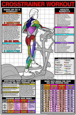 Poster, Crosstrainer Workout - Click for larger picture