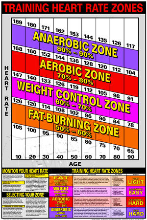 Heart Rate Training(Laminat) - Click for larger picture