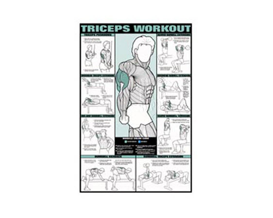 GP520L-Poster, Triceps Workout,Laminated