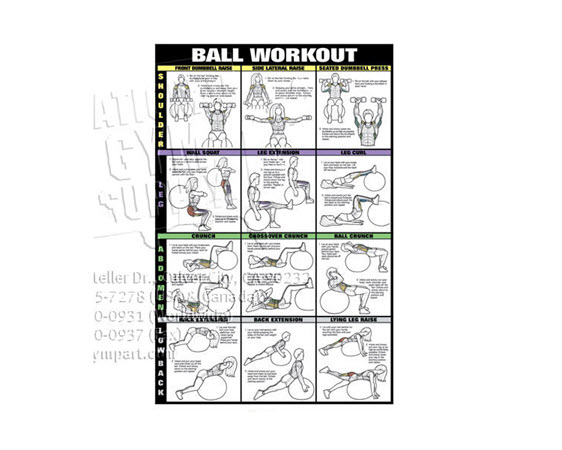Poster,Swiss Ball Workout,Laminate(2of2) - Click for larger picture