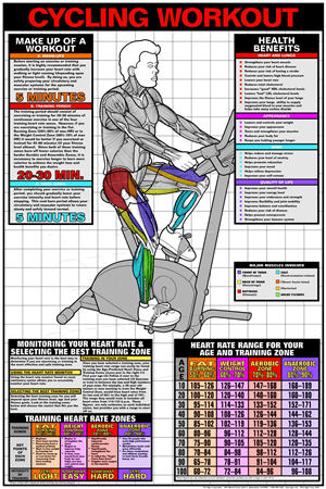 Poster Cycling Workout (Laminated) - Click for larger picture