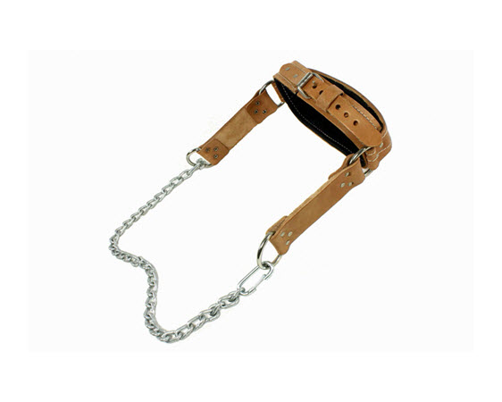 Head Harness, Leather, Neck Exercise - Click for larger picture
